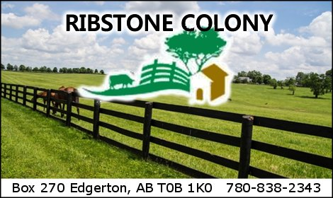 Ribstone Colony  2019 09 11